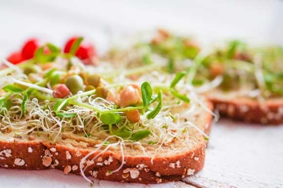 Os passos para um sanduíche vegetariano perfeito - Sabor em Movimento
